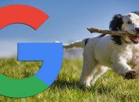 Google buscará previamente los sitios web creados con intercambios firmados
